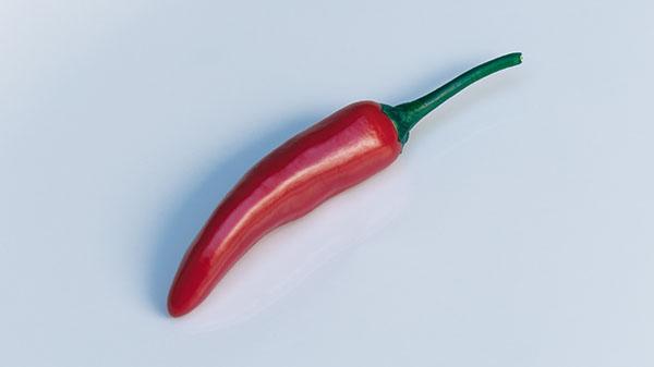 Paprika/Peper