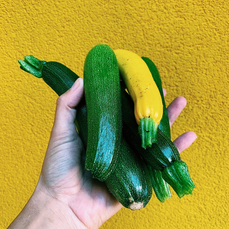 Courgettes oogst