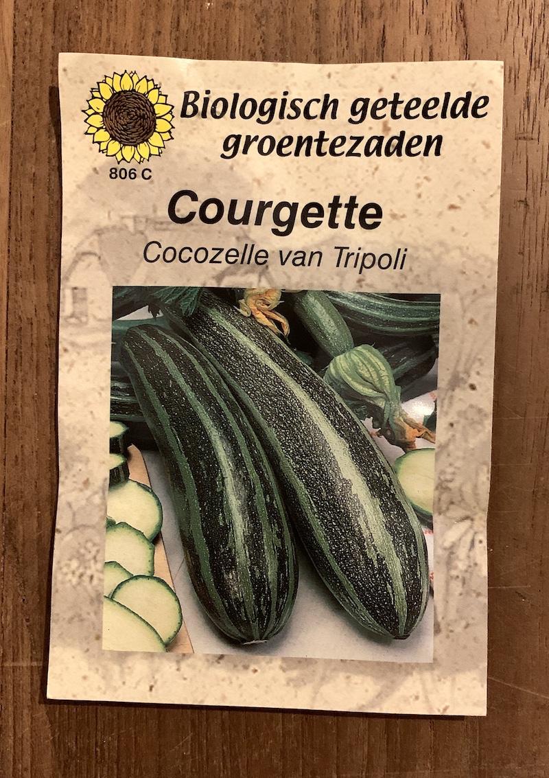 courgette zaaien- gestreepte courgette