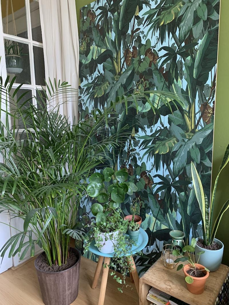 voorbeeld van plantenhoek maken in de slaapkamer
