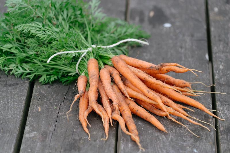 wortel zaaien
