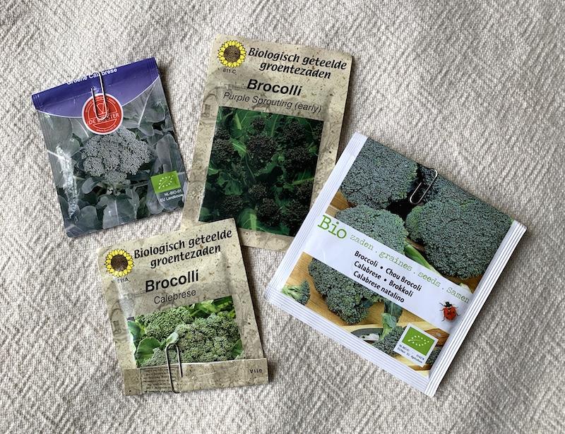 Broccoli zaaien: zaden kopen